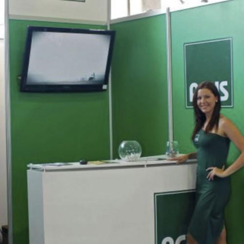 finco2011-StandACHS2011-2