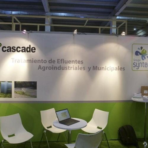 ExpoAmbiental2013-StandSacaf-2013-2